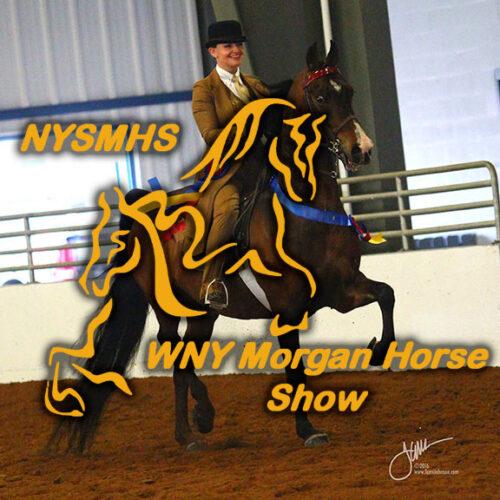 Western NY Morgan Show
