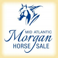 2019 Mid-Atlantic Morgan Sale