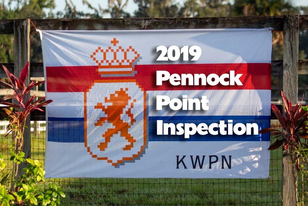 2019 Pennock Point KWPN Inspection