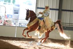 2021 Silver Spur Arabian Show