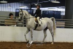 041 A-HA-AA Equitation W-T 10 & Under