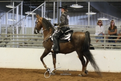 039A ASB Western Country Pleasure Open