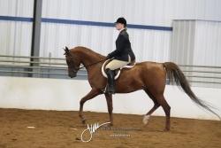121 Hunt Seat Equitation AATR 19 & Over