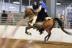 125 Arabian Costume Championship
