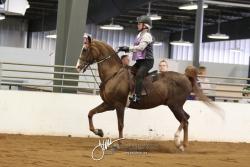 414-415 W-T-C Saddle or Hunt Seat