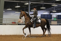 152 ASB Western Country Pleasure Championship