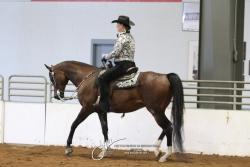 165 HA Western Pleasure AATR Championship