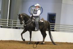 119 MOR AOTS Western Pleasure Championship