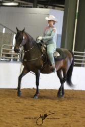 135 MOR Western Equitation Championship