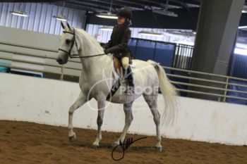 043 A-HA-AA Equitation Walk-Trot 10 & Under