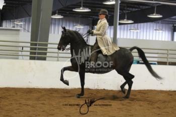047 MOR Classic Pleasure Saddle Open
