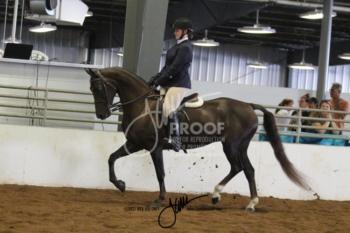 071A MOR Hunt Seat Equitation