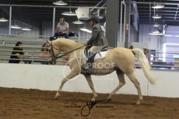 110 HA-AA Sport Horse US ATR