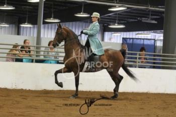 130A MOR Classic Pleasure Saddle Amateur-Jr Ex