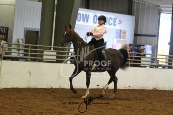 406A-B Walk-Trot Saddle-Hunt Seat 14-17