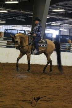 174 HA-AA Western Pleasure Open Championship